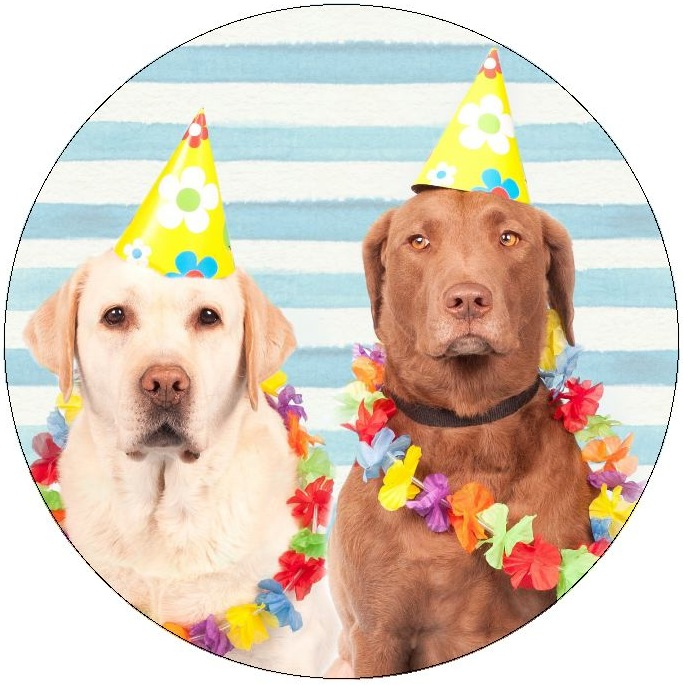 Birthday Dogs Pinback Buttons and Stickers