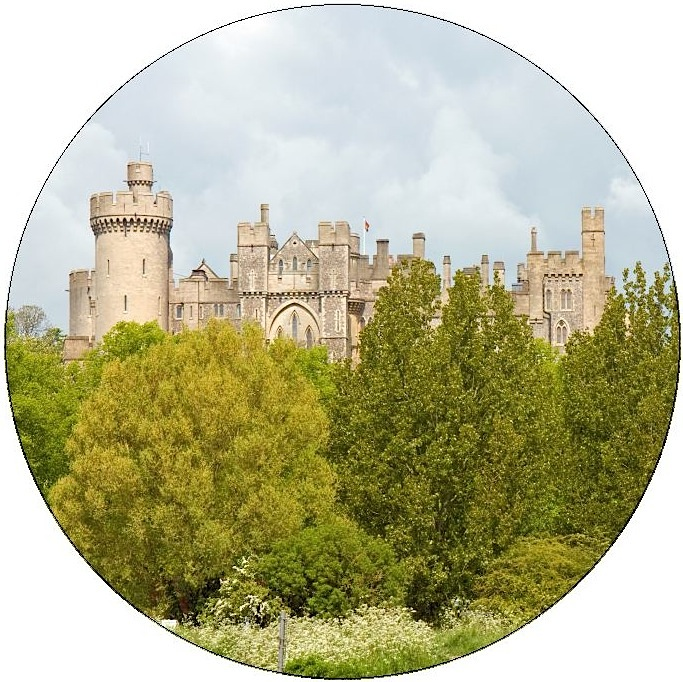 Castle Pinback Button and Stickers