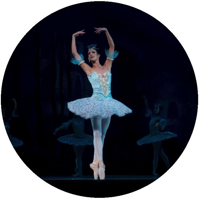 Ballerina Dance Pinback Buttons and Stickers