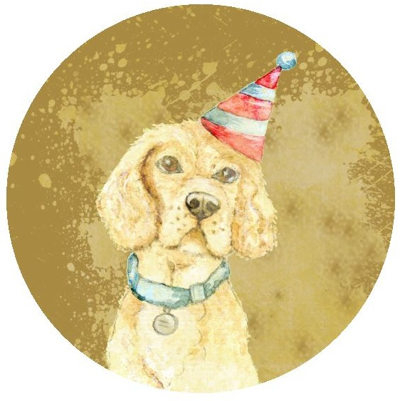 Birthday Dog Pinback Buttons and Stickers