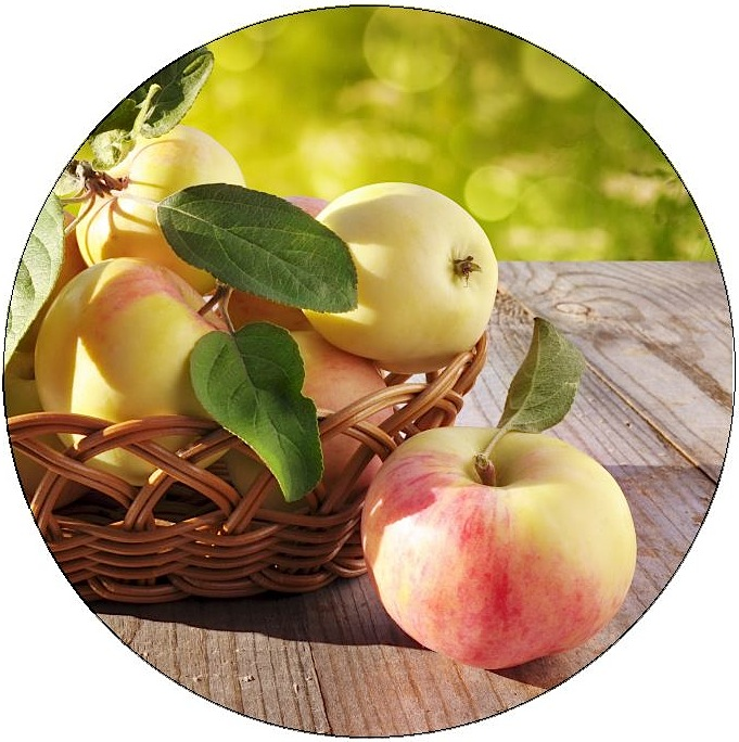 Apple Pinback Buttons and Stickers