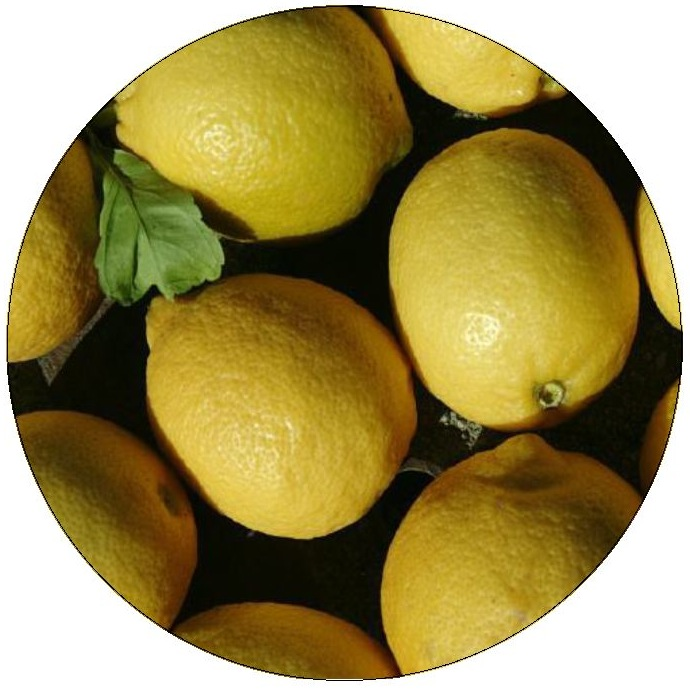 Lemons Pinback Buttons and Stickers
