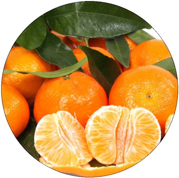 Oranges Pinback Buttons and Stickers
