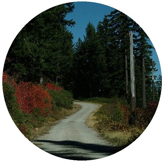 Roads Pinback Buttons and Stickers