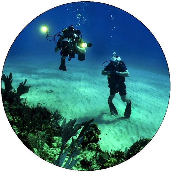 Scuba Diving Pinback Buttons and Stickers