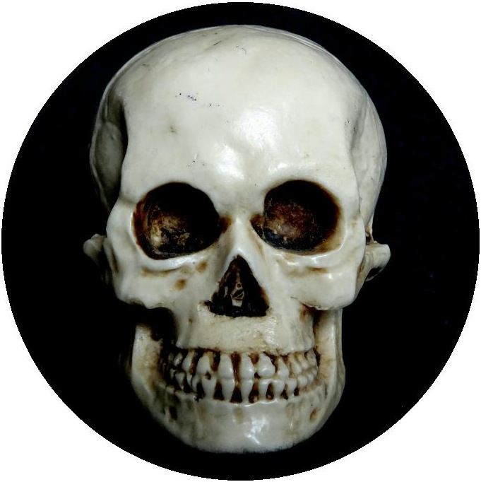Skull and Skeleton Pinback Button and Stickers