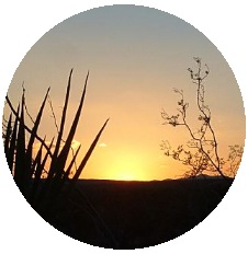 Sunset Photo Pinback Buttons and Stickers